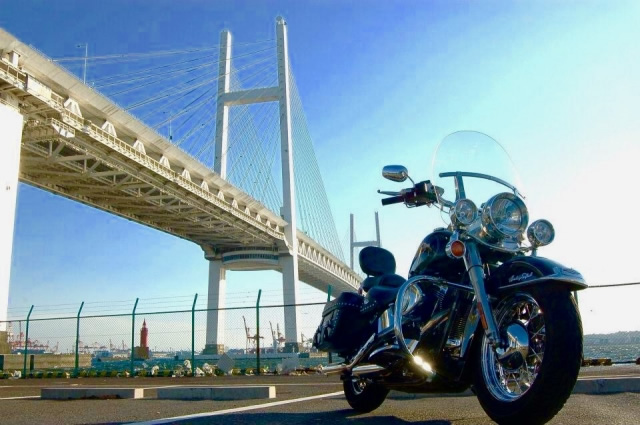 Picture of Harley and Bridge